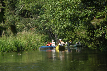 kajaki na rzece Rospuda