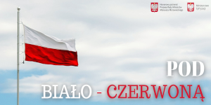 """Projekt """"Pod Biało-Czerwoną"""" na stulecie Bitwy Warszawskiej Środki dla gmin na budowę masztu i flagę"""
