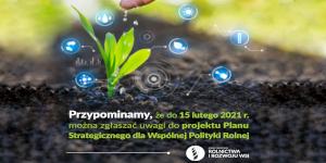 Konsultacje Planu Strategicznego dla Wspólnej Polityki Rolnej